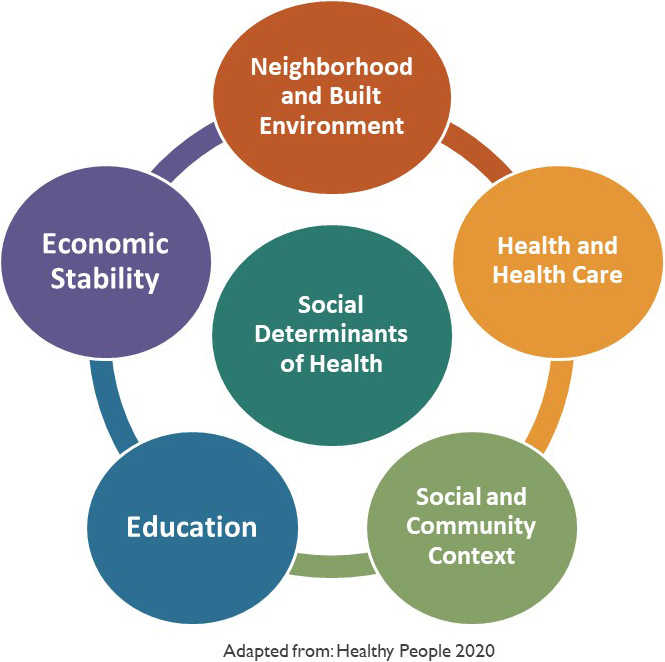 Image result for social determinants of health graphic
